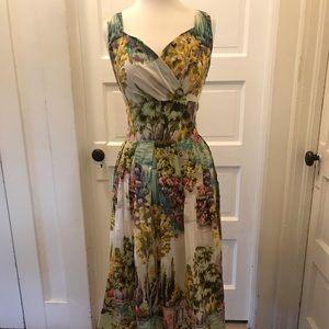 Vintage style fit-n-flare novelty print dress